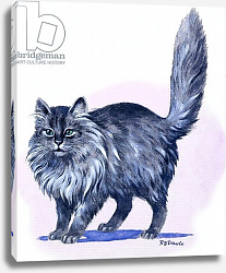 Постер Дэвис Р. (жив, дет) Persian Cat, from 'Treasure', 1966