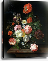Постер Руйш Рейчел Flower in a glass vase