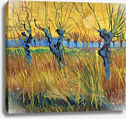 Постер Ван Гог Винсент (Vincent Van Gogh) Pollarded Willows and Setting Sun, 1888