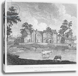 Постер Дейес Эдвард (грав) View of the Pest-Houses at Tothill Fields engraved by Charles Pye, 1796