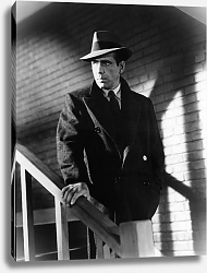 Постер Bogart, Humphrey (Maltese Falcon, The) 2