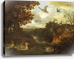 Постер Барлоу Франсис Ducks and other birds about a stream in an Italianate landscape, 1671