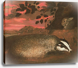 Постер Барлоу Франсис Badger, 17th century