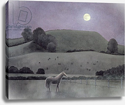 Постер Брэйн Энн (совр) Horse in Moonlight, 2005
