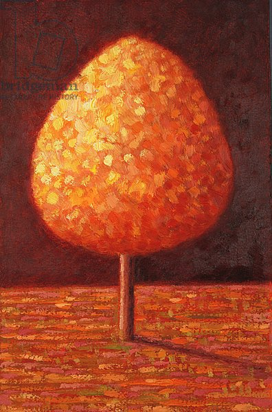 Sun Drenched Tree, 1996