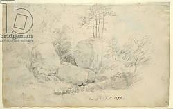 Постер Фридрих Каспар (Caspar David Friedrich) Boulders in Woodland, 1800