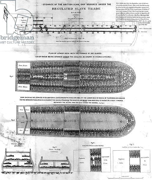 Stowage of the British Slave Ship 'Brookes' Under the Regulated Slave Trade Act of 1788