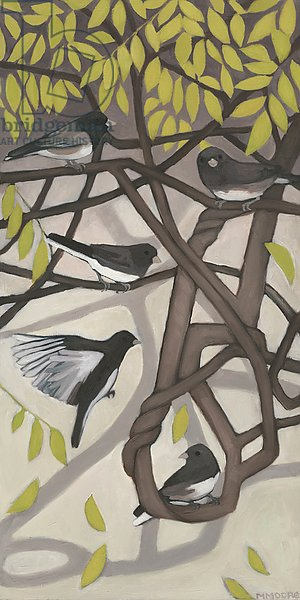 Juncoes on a Twisted Vine, 2015