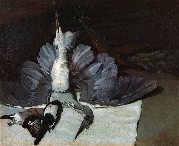 Still-Life: Heron with Spread Wings, 1867