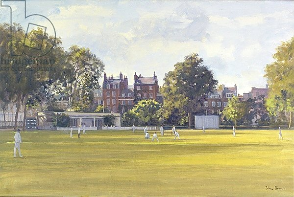 Cricket at Burton Court