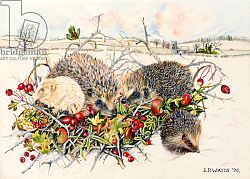 Постер Уоттс Э. (совр) Hedgehogs in Hedgerow Basket, 1996