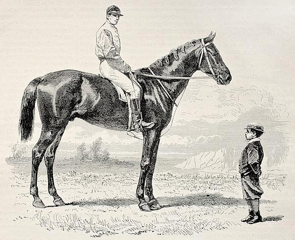 Suzerain, winner of the Prix du Jockey Club (Derby) in 1868. Created by Janet-Lange and Dutheil, pub