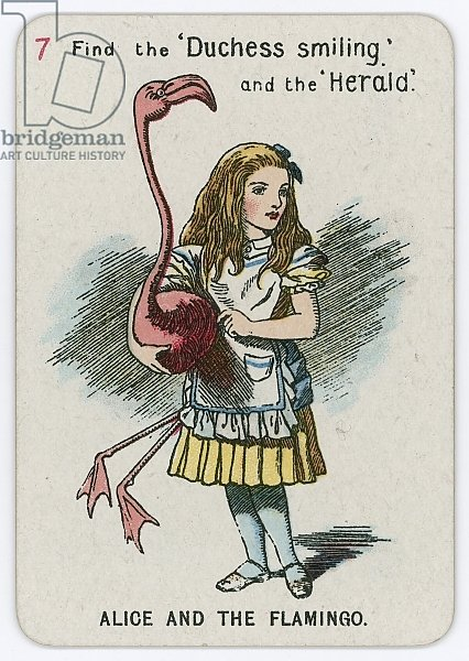 Alice and the Flamingo
