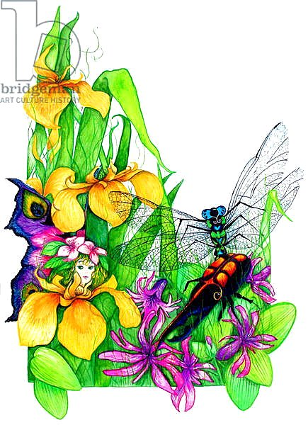 Fairy, Dragonfly and Beetle