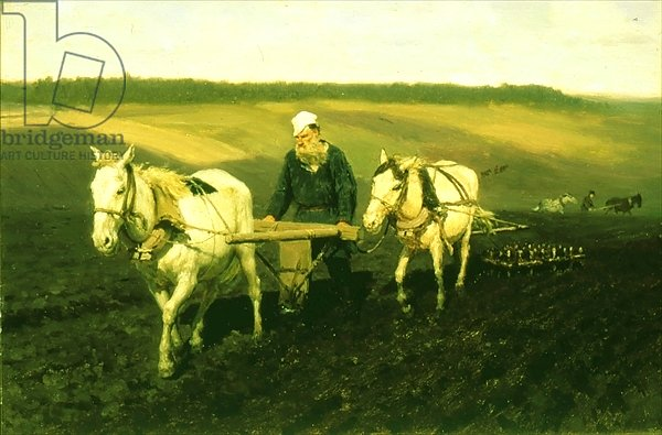The writer Lev Nikolaevich Tolstoy ploughing with horses, 1889