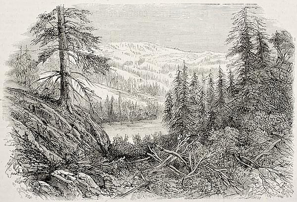Sierra Nevada mountains, USA. Created by Provost, published on L'Illustration, Journal Universel, Pa