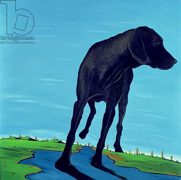 Joe's Black Dog, 2000
