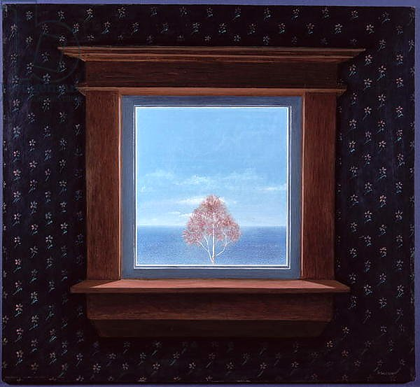 Through the Window, 1981