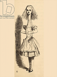 Постер Тениель Джон Alice grows taller, from 'Alice's Adventures in Wonderland' by Lewis Carroll, published 1891