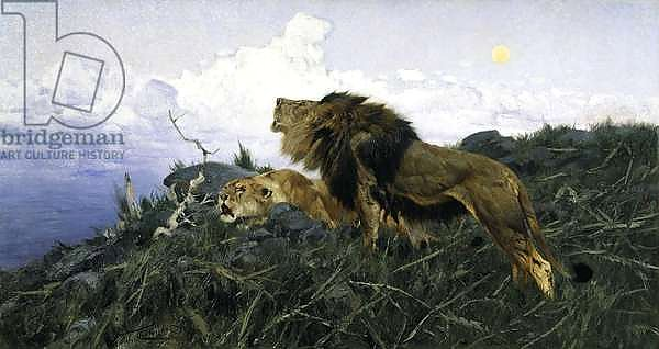 Lions at Dusk,