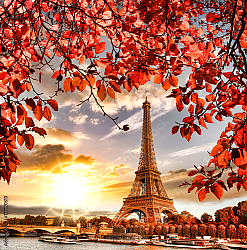 Постер Франция, Париж. Eiffel Tower with autumn leaves