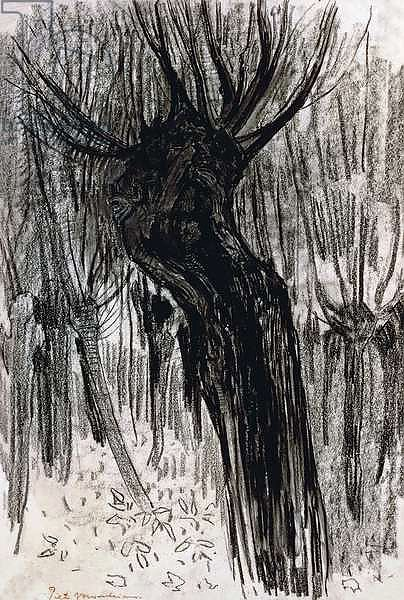 Willows, 1902-1904, by Piet Mondrian, drawing. Netherlands, 20th century.