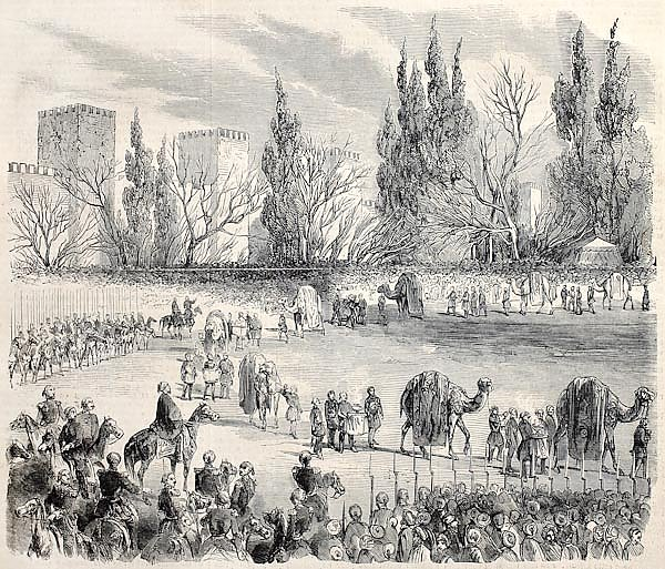 Sultan's camel caravan departing from Istanbul to Mecca. Original, from drawing of Blanchard, publis