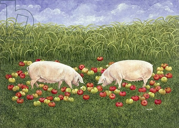 Apple-sows