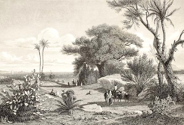 Marsala surroundings, Italy. Original drawn by Henri De Chacaton, engraved by Paul Girardet. France,