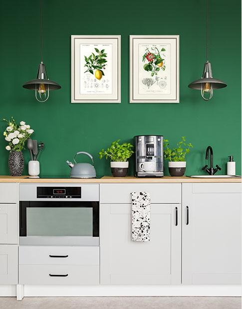 Гравюры с цветами и фруктами для интерьера кухни или столовой