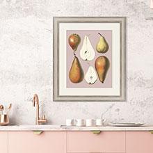 Копии гравюр с фруктами для кухни или столовой