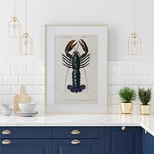 Копии гравюр с рыбами для кухни или столовой