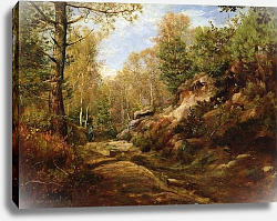 Постер Дьютилюкс Анри Pines and Birch Trees or, The Forest of Fontainebleau, c.1855-57