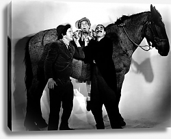 Постер Marx Brothers (A Day At The Races) 4