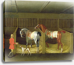 Постер Сеймур Джеймс The Stables and Two Famous Running Horses belonging to His Grace, the Duke of Bolton, 1747