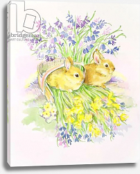 Постер Мэттьюз Диана (совр) Rabbits in a basket with Daffodils and Bluebells