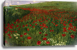 Постер Сзиней Мерсе The Poppy Field, 1896
