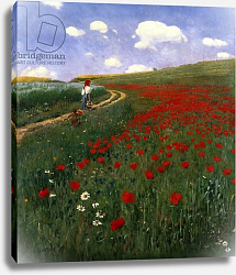 Постер Сзиней Мерсе The Poppy Field