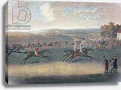 Постер Сарториус Франсуа Derby Sweepstake, 1791/2
