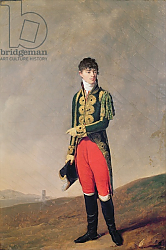 Постер Бойли Луи Baron de Galz de Malvirade in the uniform of the Emperor's page