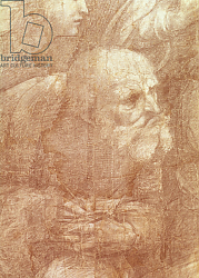 Постер Рафаэль (Raphael Santi) The School of Athens, detail of the cartoon depicting an elderly man, c.1510