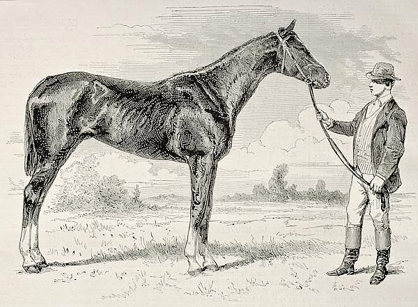 The Earl, winner of the Grad Prix de Paris in 1868. Created by Janet-Lange and Cosson-Smeeton, publi